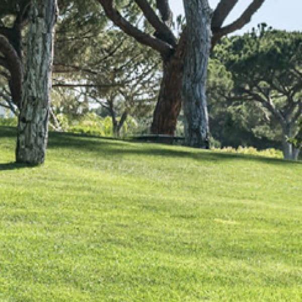 Принадлежности для газонокосилок